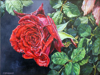The Rose - $300