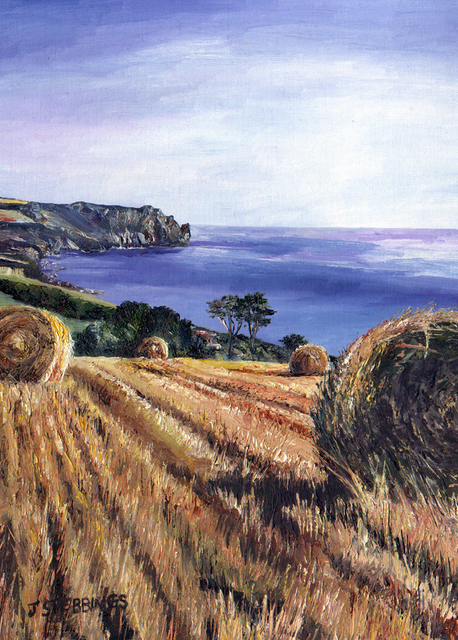 The Hay field - SOLD