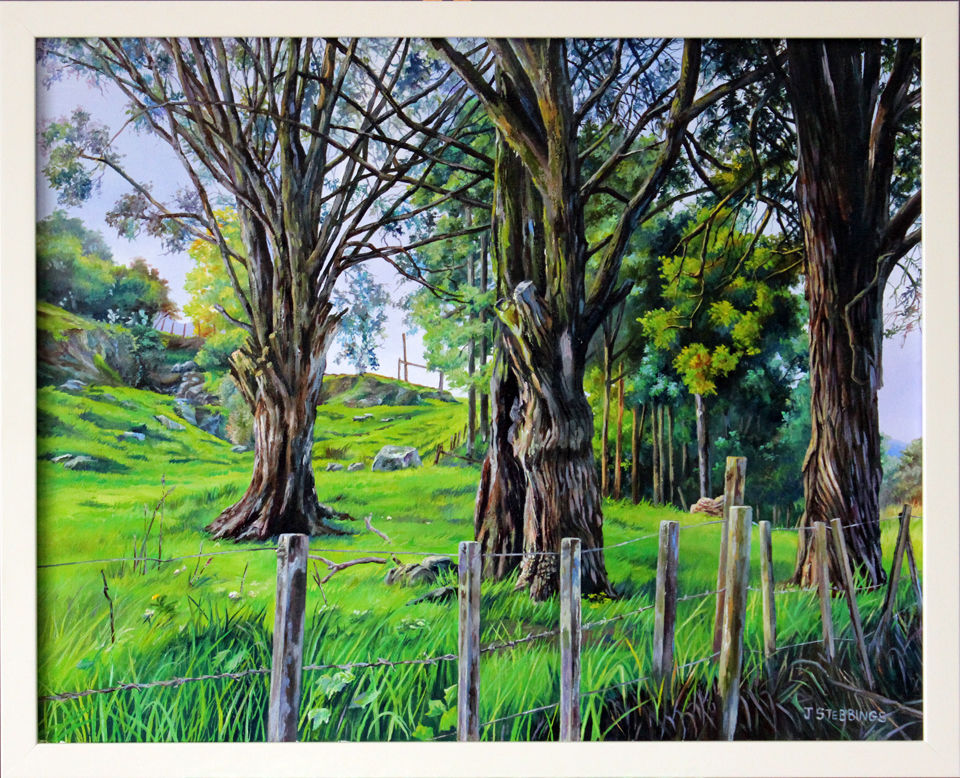 Riwaka Valley - $650