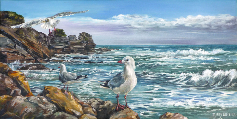 West Coast Gulls